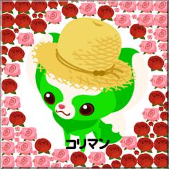 薔薇薔薇①No12コリマン様.PNG